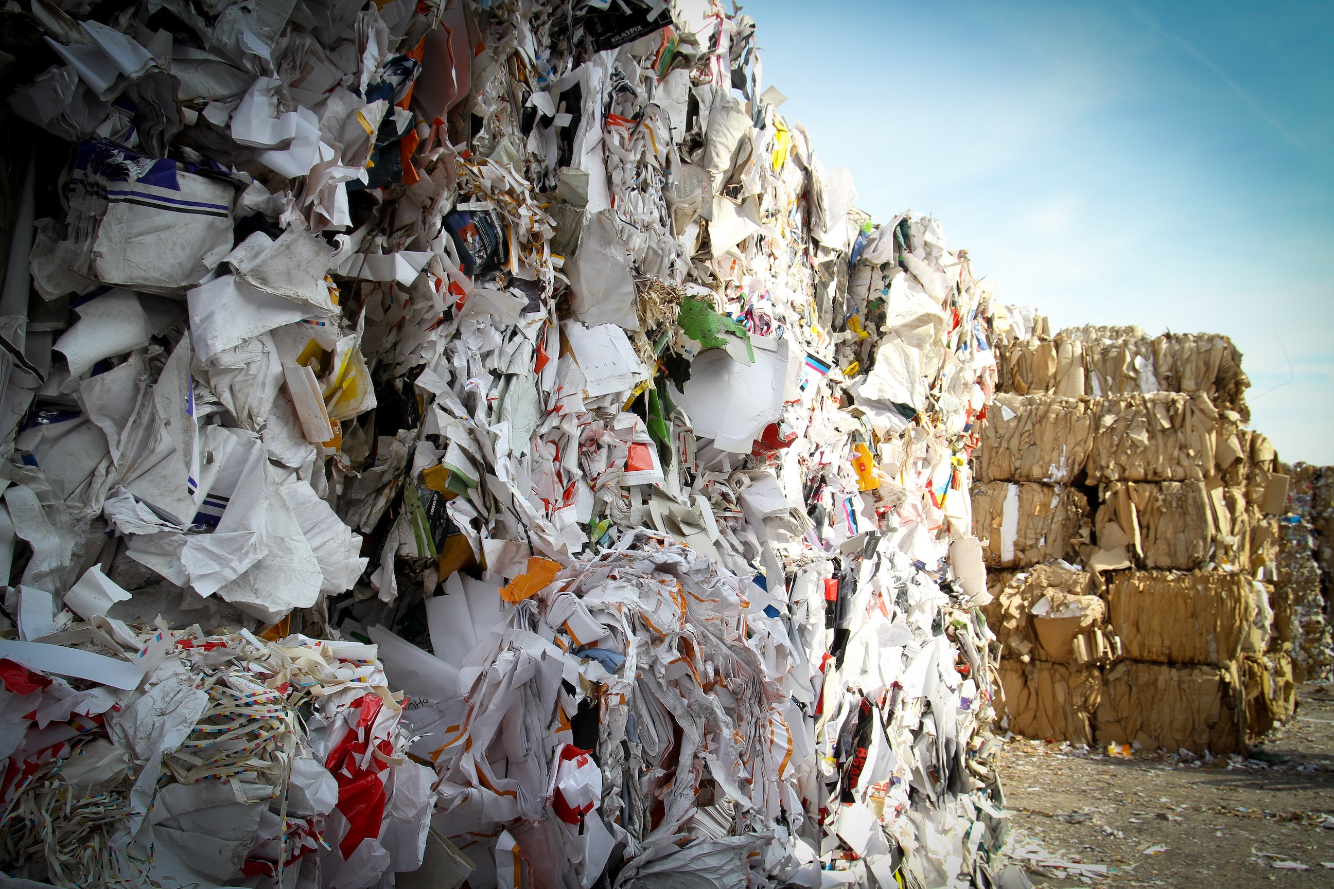 Facts About Recycling: A Global Approach