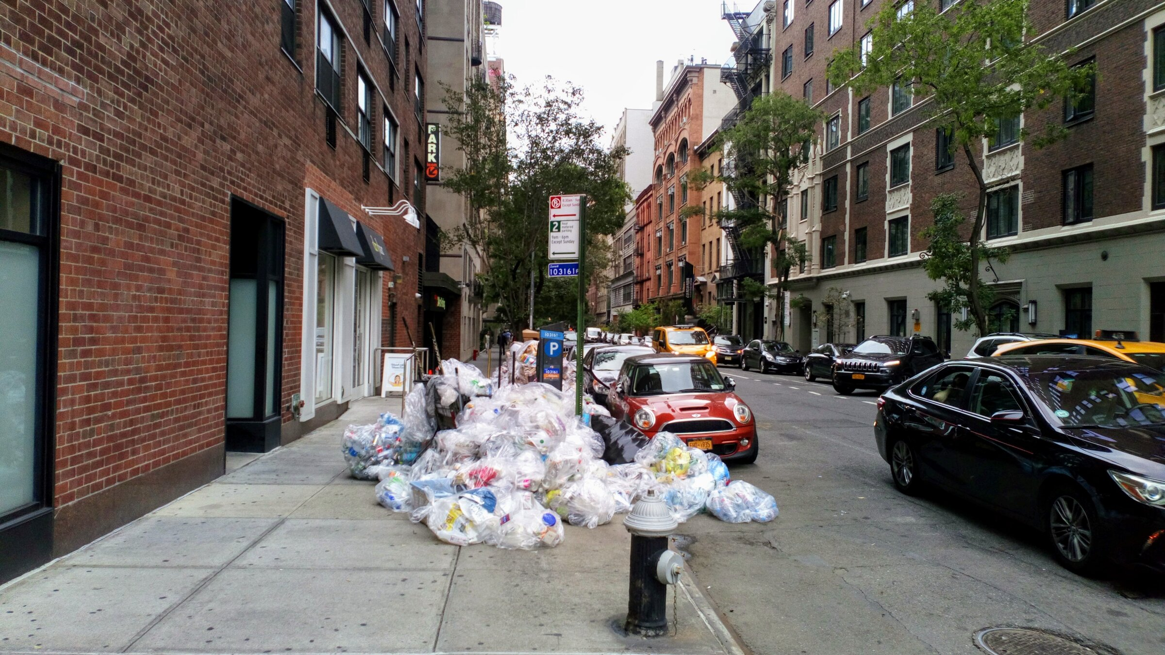 Waste Freakonomics: How the Rules of Economics Apply to Garbage