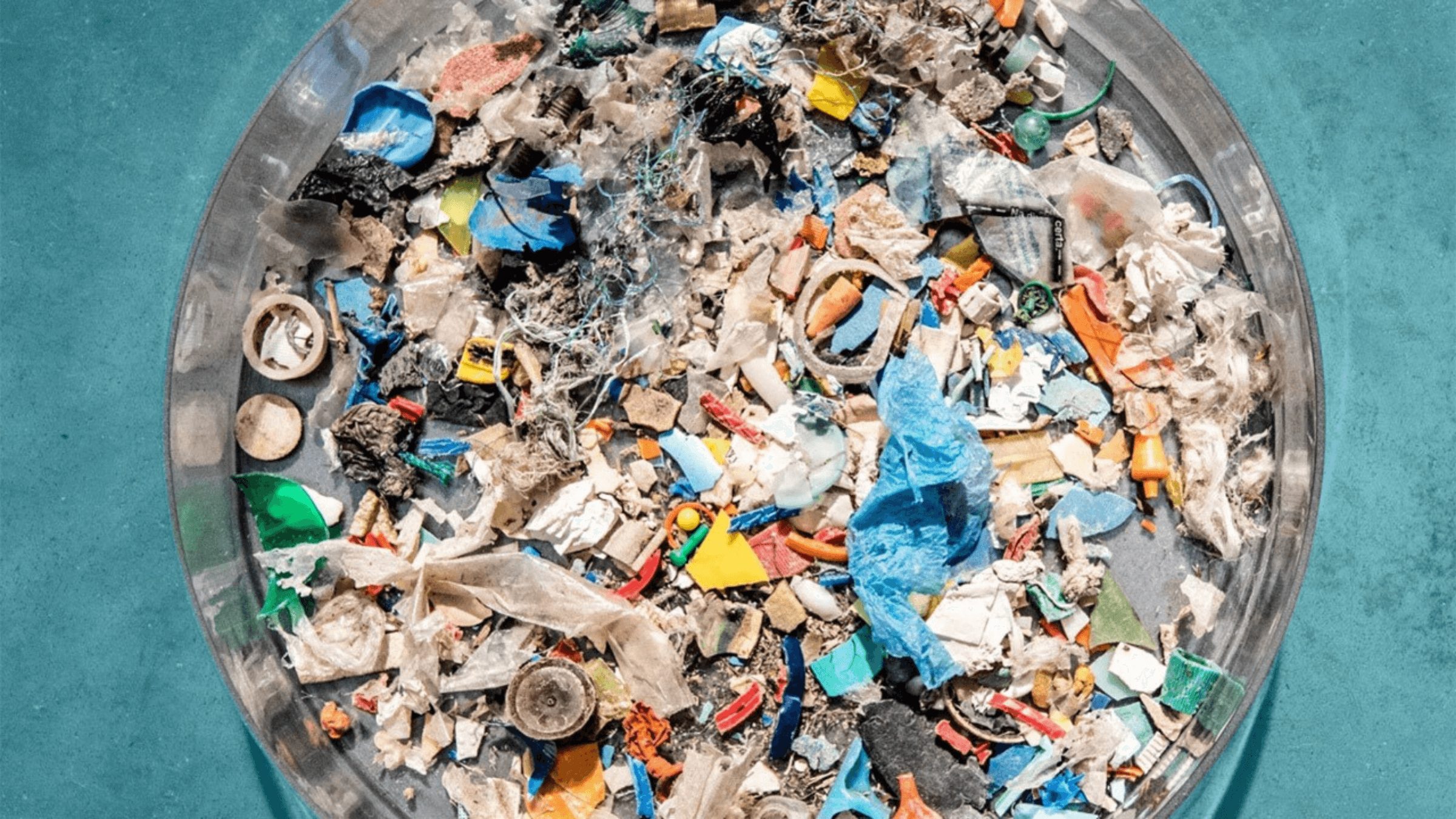 7 Types of Plastic: How do they Impact our Environment?