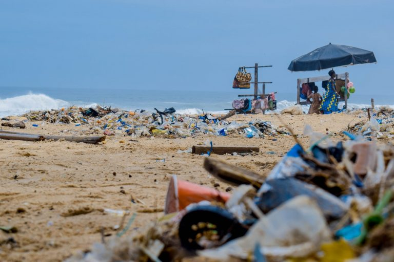World's Most Successful Beach Clean-ups