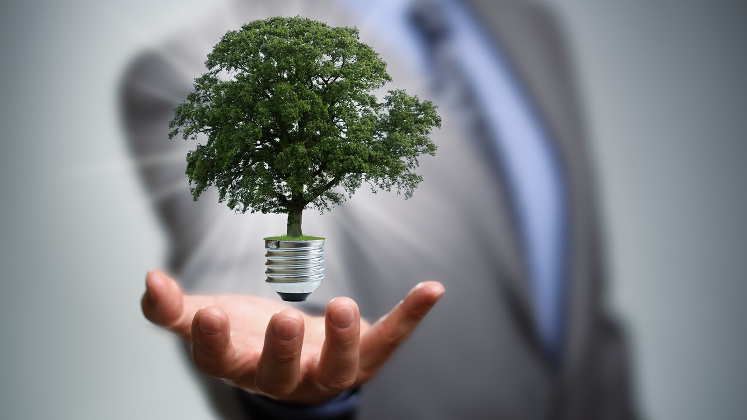 3 Business Sustainability Case Studies And Why They Worked