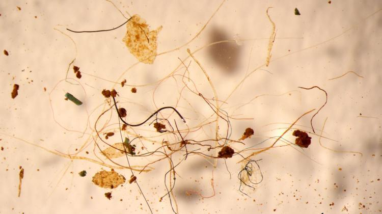 Microplastics floating in the air