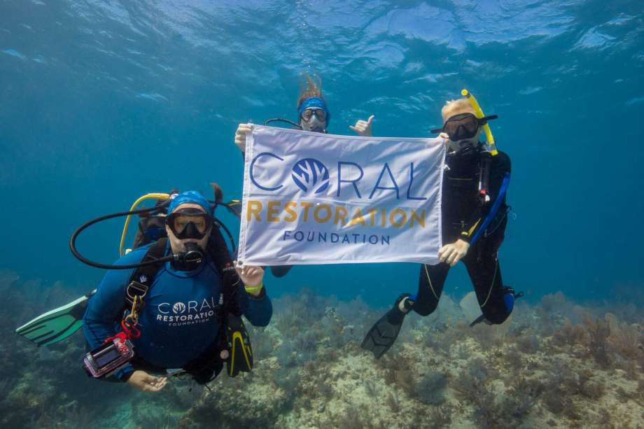 Members of Coral Restoration Foundation, an environmental non-profit
