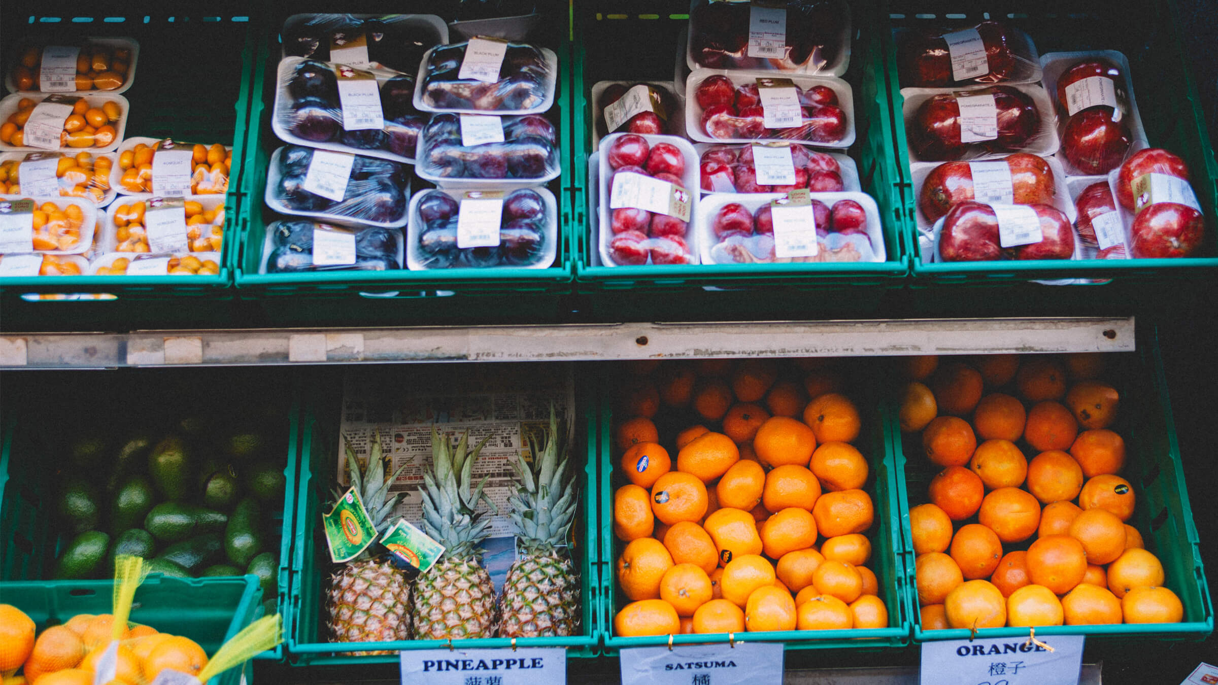 Sustainable Grocery Shopping: A Tactical Guide