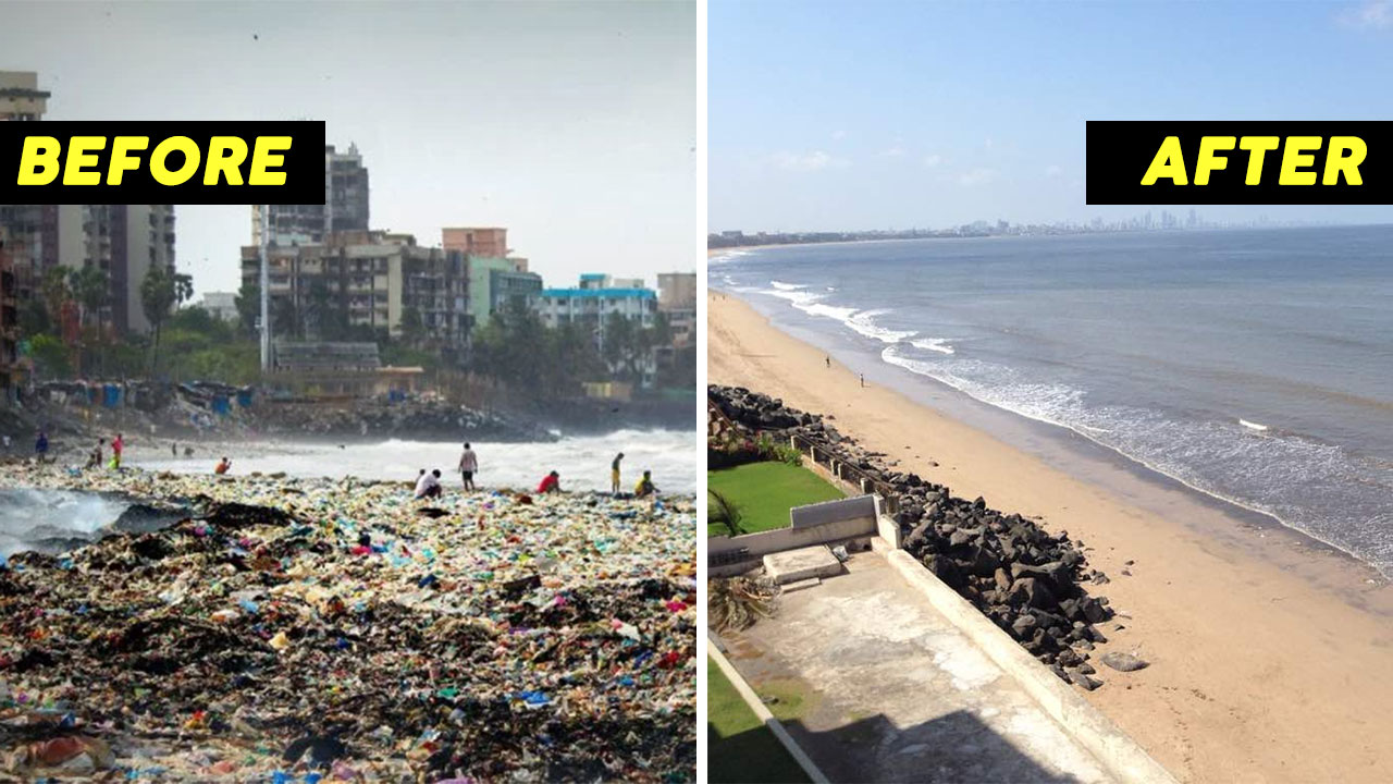 Picture showing the difference in the condition of Versova beach before and after its successful beach cleanup
