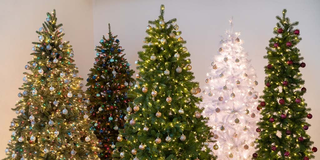 5 Christmas trees, next to each other