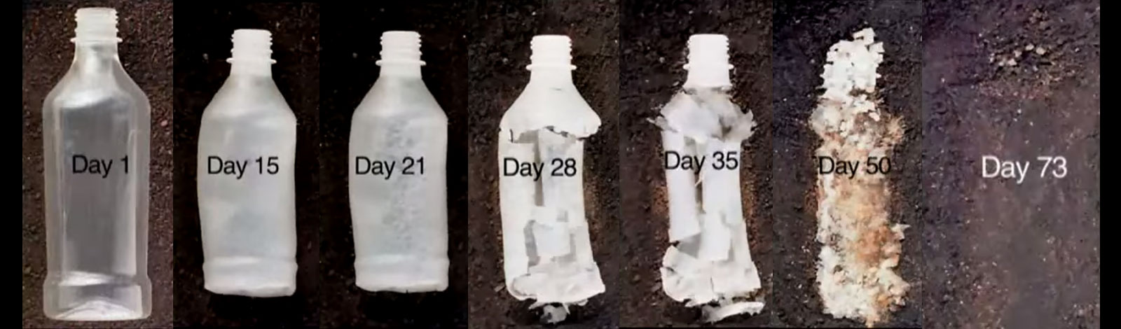Plastic bottle made from biodegradable plastic disappearing back into the Earth