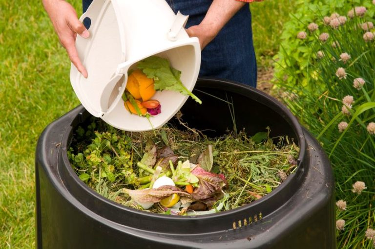 Using leftover bio-degradable materials to make compost at home