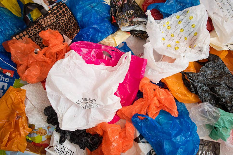 Plastic bags of various kinds which are one of the major contributors to plastic pollution