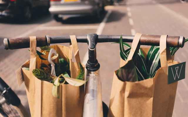 A bicycle handle with two paper bags with vegetables in them showing how a consicous consumer is helping the planet