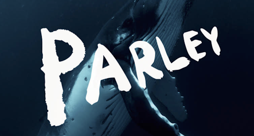 Parley, one of the non-profits fighting ocean plastics today