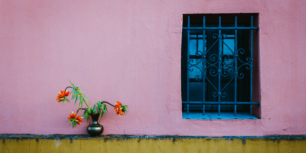 Barred Framed Window with Plant in isolated environment